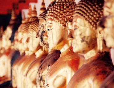 Wednesday Dharma Deshanava & Sakachchava (Sinhala)